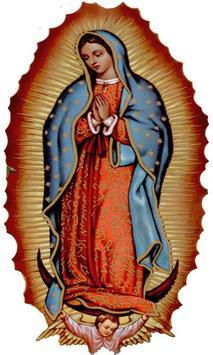 Mensajes Virgen de Guadalupe screenshot 3