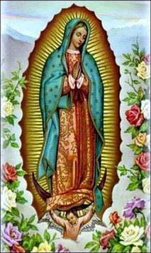 Milagrosa Virgen de Guadalupe apk screenshot