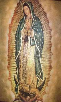Promesas Virgen de Guadalupe screenshot 3