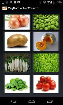 Vegetable Names (2 Lines) apk screenshot