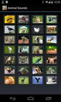 Animal Sounds (4 line display) screenshot 1