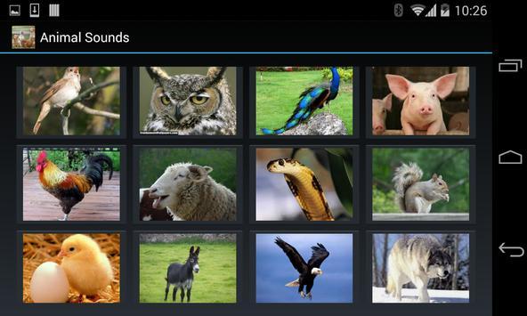 Animal Sounds (4 line display) screenshot 6