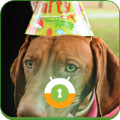 Birthday Dog Wall & Lock icon