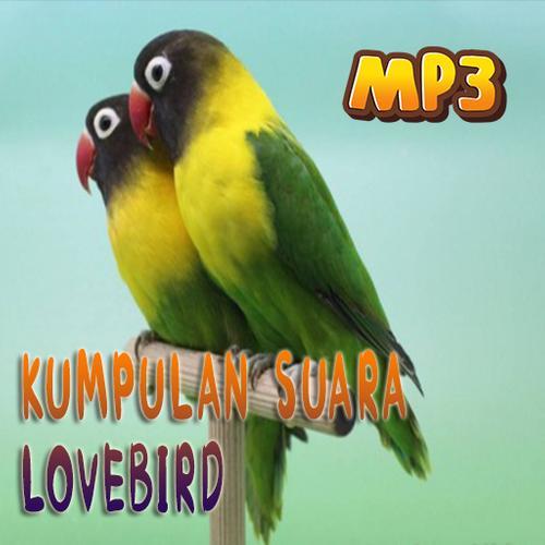Masteran Suara Burung Lovebird For Android Apk Download