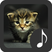 Kitten Sounds icon