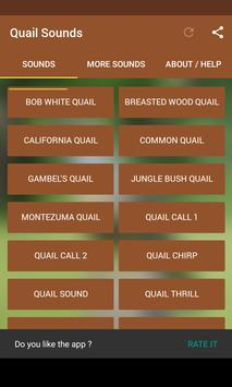 Quail Sounds poster