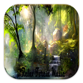 Relax Forest Music Completed icon
