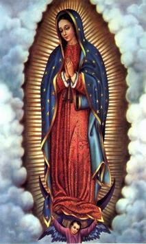 Virgen De Guadalupe Para Iluminar 2 screenshot 5