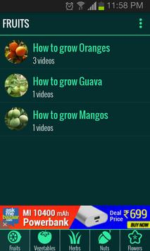 Roof Garden (Grow Vegetables) screenshot 6