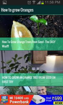 Roof Garden (Grow Vegetables) screenshot 14