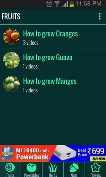 Roof Garden (Grow Vegetables) screenshot 1