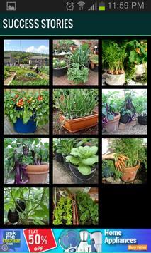 Roof Garden (Grow Vegetables) screenshot 2