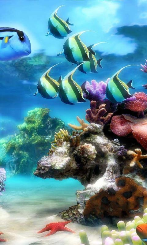 Underwater World Live Wallpaper Theme For Android Apk Download