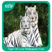 Tiger HD Wallpapers Free icon