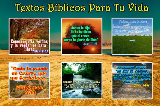 Textos Biblicos screenshot 1