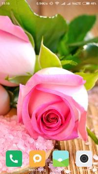 Best Rose Wallpapers apk screenshot