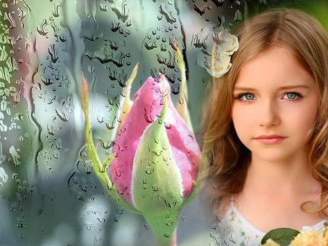 Rain Rose Photo Frames screenshot 7