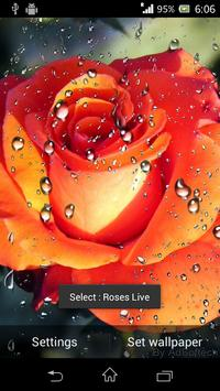 Beautiful Roses Live Wallpaper screenshot 2