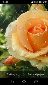 Beautiful Roses Live Wallpaper screenshot 4