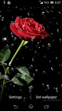 Beautiful Roses Live Wallpaper screenshot 5