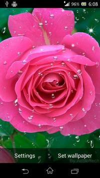 Beautiful Roses Live Wallpaper screenshot 7