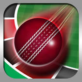 Roulette Cricket icon