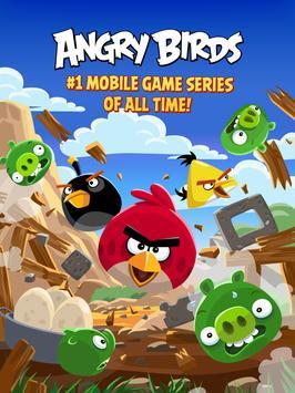 Angry Birds screenshot 5