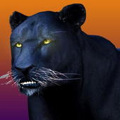 Deadly Black Panther Simulator icon
