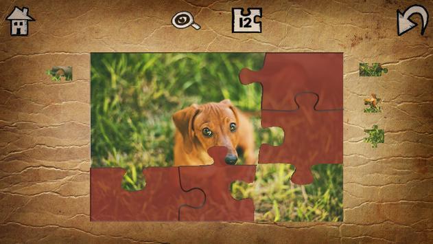 Cute Animal Jigsaw Puzzles apk screenshot