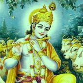 BhajaGovindam icon