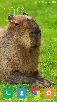 Capybara Wallpapers screenshot 1