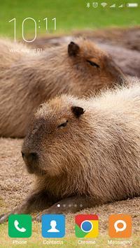 Capybara Wallpapers screenshot 5