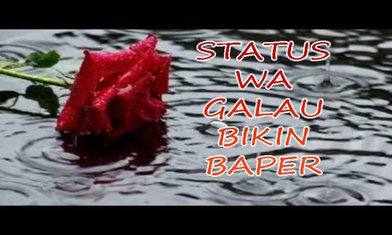 Status Wa Galau Bikin Baper For Android Apk Download