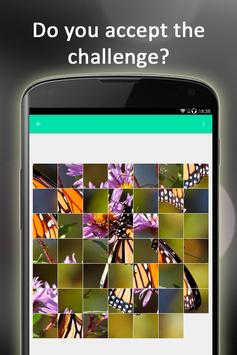 Butterfly Puzzle screenshot 7