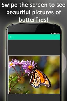 Butterfly Puzzle screenshot 8