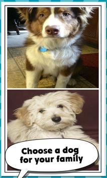 7 Schermata Family Dog Breeds