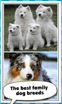 3 Schermata Family Dog Breeds