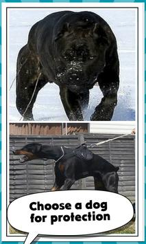 Protective Dog Breeds capture d'écran 2