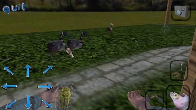Duck Feeding Sim screenshot 10