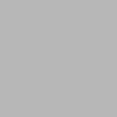 Stint+ icon