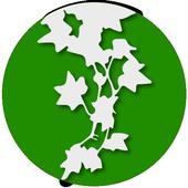 Ivy (Sidebar, Widgets, RSS) icon