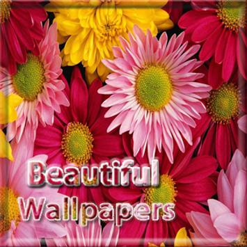 Beautiful Wallpapers poster