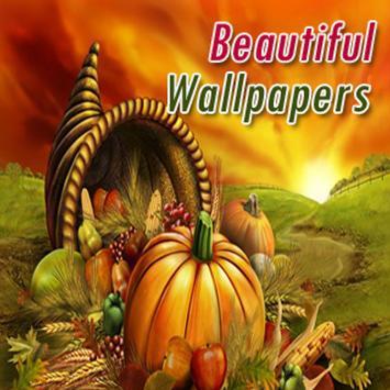 Beautiful Wallpapers screenshot 1