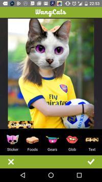 Wang Cats apk screenshot