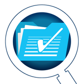 STI System Search icon