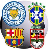 Football Logo Quiz Free icon