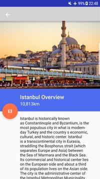 Istanbul Tourist poster