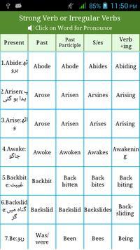 Irregular & Regular Verbs Urdu screenshot 5