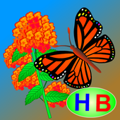 Story of Flower and Butterfly icon