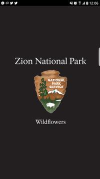 Zion Park Wildflowers poster